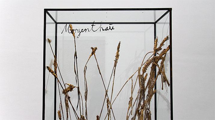 Vitrine Morgenthau von Anselm Kiefer in der Pinakothek der Moderne in München