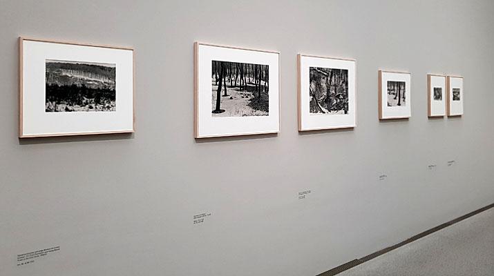 Fotoausstellung Renger Patzsch in der Pinakothek der Moderne in München