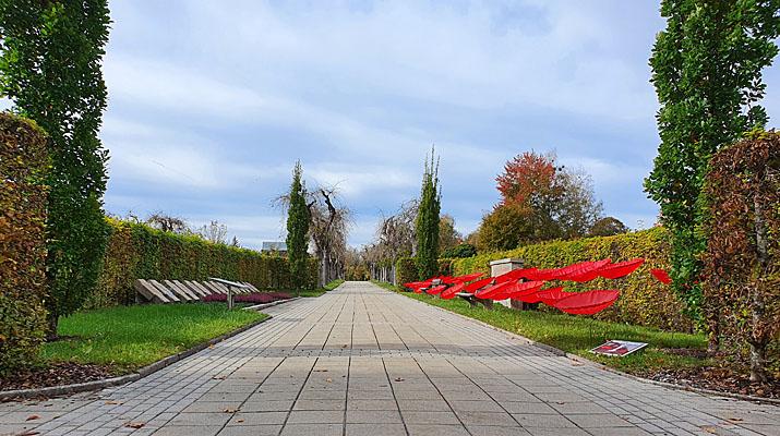 Mohnblumen von Walter Kuhn auf dem Friedhof Penzberg
